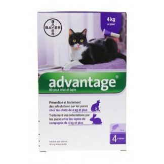 Bayer Advantage Pipettes antiparasitaires Chat/Lapin