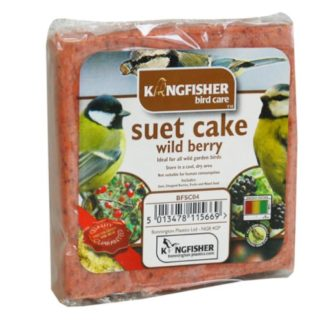 Bird Feed Wild Bird High Energy Kingfisher Suet Cake Peanut Extremely Popular