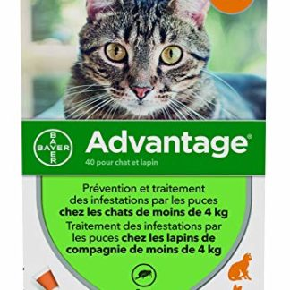 ADVANTAGE Chat – Anti-Puces pour Chats