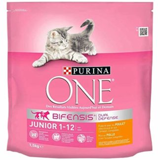 PURINA ONE Croquettes Chat Junior 1 à 12 Mois Poulet 1,5Kg (Lot de 3)